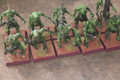 Plaguebearers of Nugle x10 paintinge Lot 16565