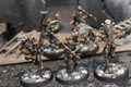 Space Wolves Wulfen x5 painted Lot 15595