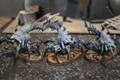 Strange Ethereal Spiders painted x3 Lot FRP043