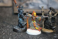 Two Eldar Warlocks and one Spiritseer Lot 15625