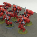 Blood Angels Assault Squad x6 painted Lot 15905