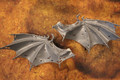 Tyranid Hive Tyrant wings 16080