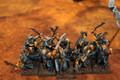 Dark Elves Shades x10 Lot 16083
