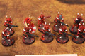 Eldar Guardians x10 Lot 16089