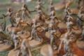 Daemonettes of Slaanesh x20 Lot 16183