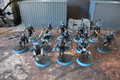 Drukhari Wyches x13 Lot 16436