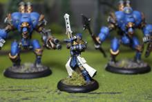 Cygnar Battlebox Lot 5576 Blue Table Painting Store
