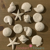 Edible Beach Shells (14 per box) White Medium