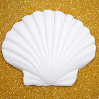 "3.5"" Clam Shell (2 per box)"