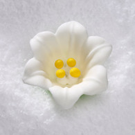 "1.5"" Royal Icing Easter Lily-White (10 per box)"