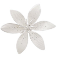 "4.5"" Stargazer Lily - Large - White (Sold Individually)"