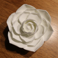 "3"" Camellia -  White (Sold Individually)"