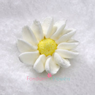 "1-1/2"" Royal Icing Daisy - Medium - White (quanity 20)"