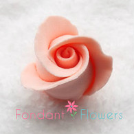 Rosebud -  Open -  Peach (10 per box)
