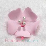 "1.25"" Fruit Blossom - Pink (10 per box)"