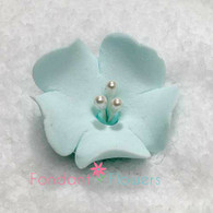 "1.25"" Fruit Blossom - Blue (10 per box)"