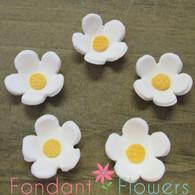 """1"""" Blossoms - Medium - White (10 per box)"""