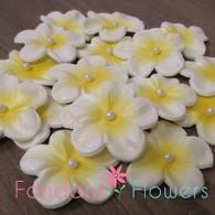 """1.5"""" Charming Blossom - White w/ Yellow (10 per box)"""