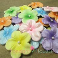 """1.5"""" Charming Blossoms - Assortment 2 (16 per box)"""