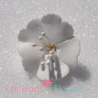 "1.25"" Cherry Blossoms - White (10 per box)"