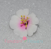 "1.25"" Cherry Blossoms - White w/ Pink (10 per box)"