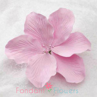 "3.5"" Gladiola - Large - Pink (Sold Individually)"
