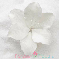 "3.5"" Gladiola - Large - White (Sold Individually)"