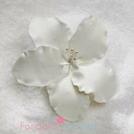 "3"" Gladiola - Medium - White (Sold Individually)"