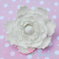 "4"" Peony - Large - White (Sold Individually)"