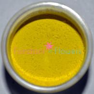 Daffodil Petal Dust