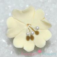 """1.25"""" Fruit Blossom - Ivory (10 per box)"""