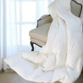 Luxurious Allergy Shields TM White Down Alternative Duvet Insert