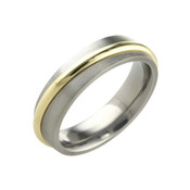 Titanium 6mm Ring Low Dome Court with 18ct Yellow Gold Centre