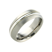 Titanium 8mm Ring with Low Dome Court and Silver Centre