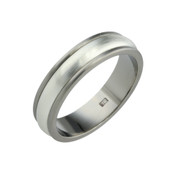 Titanium and Silver 6mm Ring