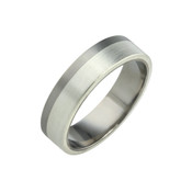 Titanium and Silver 6mm Ring LR828