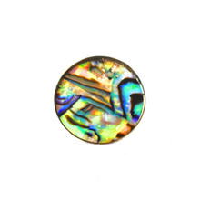 AGELESS ABALONE SNAP JEWEL