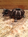 gear turtle