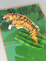 Handmade 3D Kirigami Card  with envelope  Tiger
