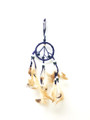 Dream Catchers(small)