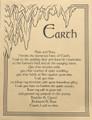 Prayer Poster Earth