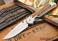 Chris Reeve Knives: Large Sebenza 21 - Bocote Inlay - V