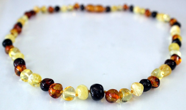 Adult Amber Necklace - Multi Scotch