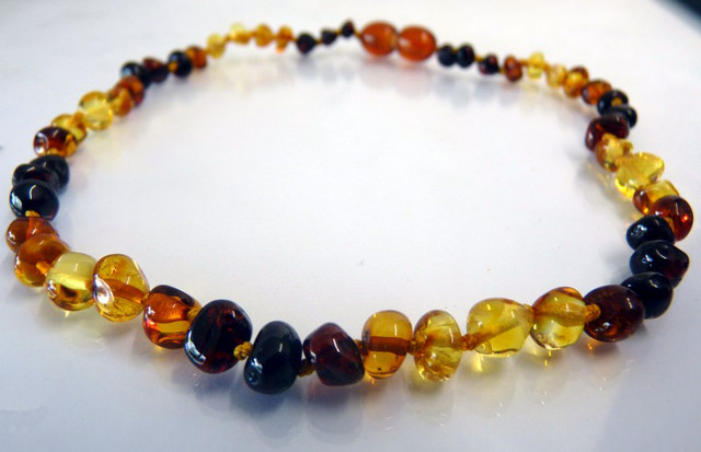 Adult Amber Necklace - Rainbow