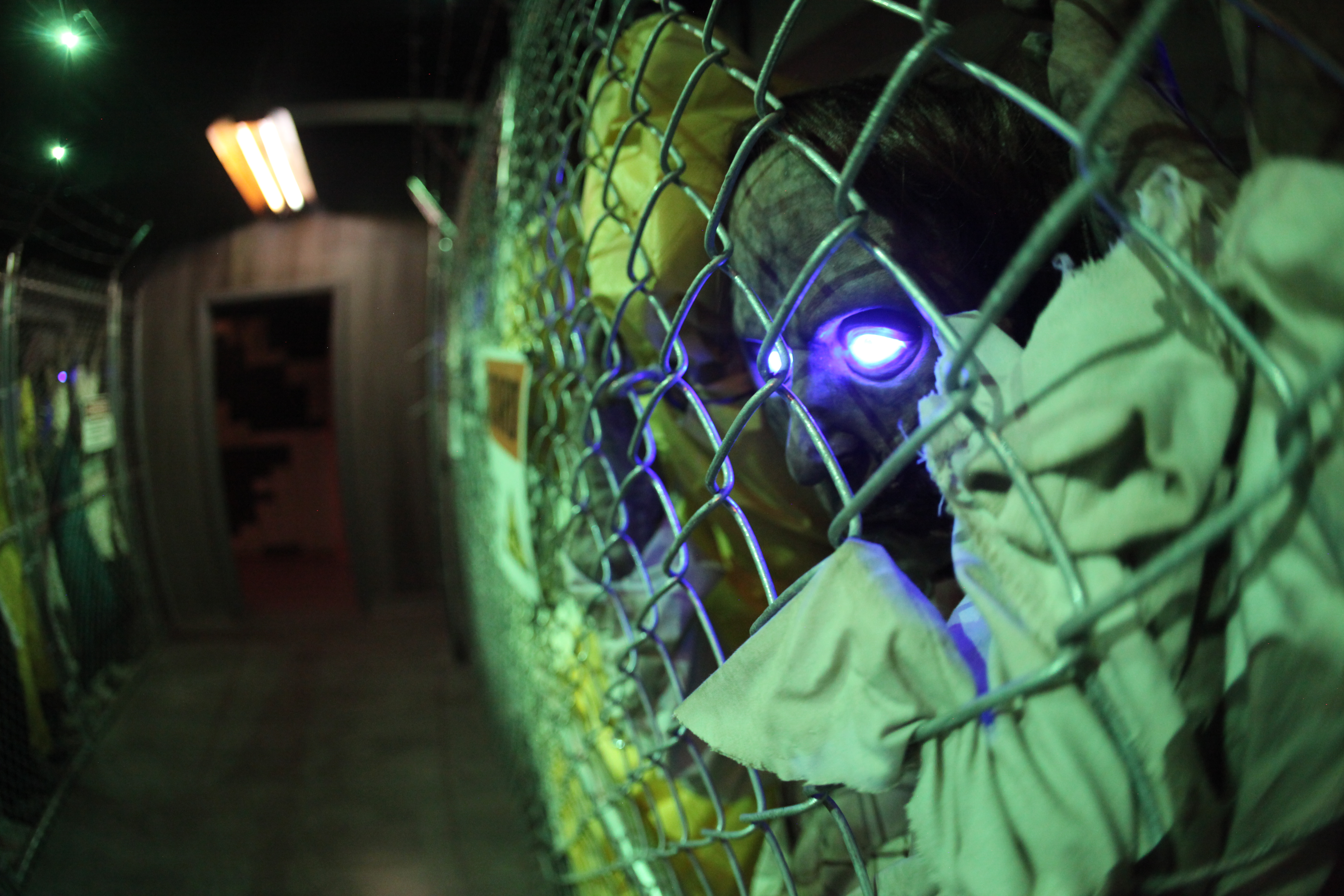 mb-fence3.jpg