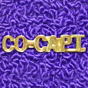CO-CAPT. Word Pin