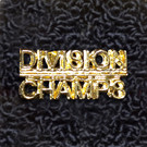 DIVISION CHAMPS Word Pin