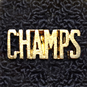 CHAMPS Word Pin