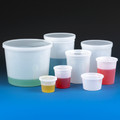 Multi-Purpose Translucent Containers with Snap on Lid