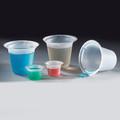 Globe Scientific Four Pour Spout Disposable Beaker